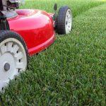 Un taglio preciso e veloce dell'erba? Ecco alcuni attrezzi consigliati