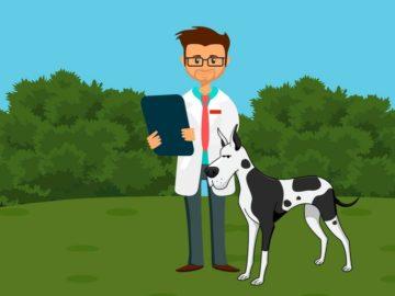 software-gestionali-per-veterinari