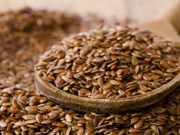 semi di lino proprietà benfiche