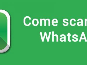 scaricare whatsapp_800x300