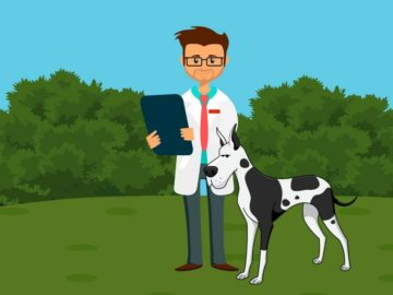 software-gestionali-per-veterinari